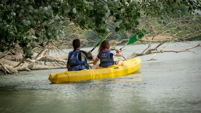 Avignon / Vaucluse - Canoë-Kayak                                                     Sport Descente du Rhône - Avignon