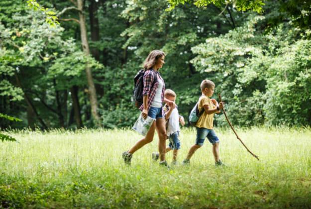 Photo l'actualité : Ateliers Nature pour les enfants