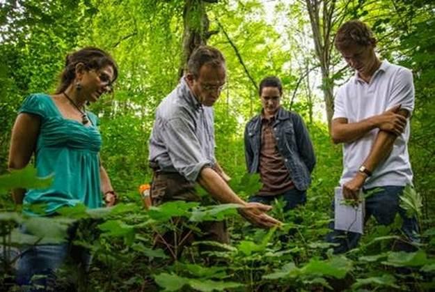 Photo l'actualité : Team Building Nature